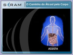 O Álcool no Corpo