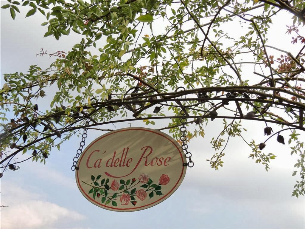 Pensieri in forma di rosa la potatura delle rose antiche for Potatura delle rose