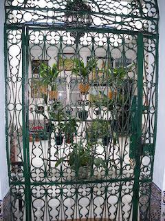 Sevilla - Patio Miguel Cid 13 001