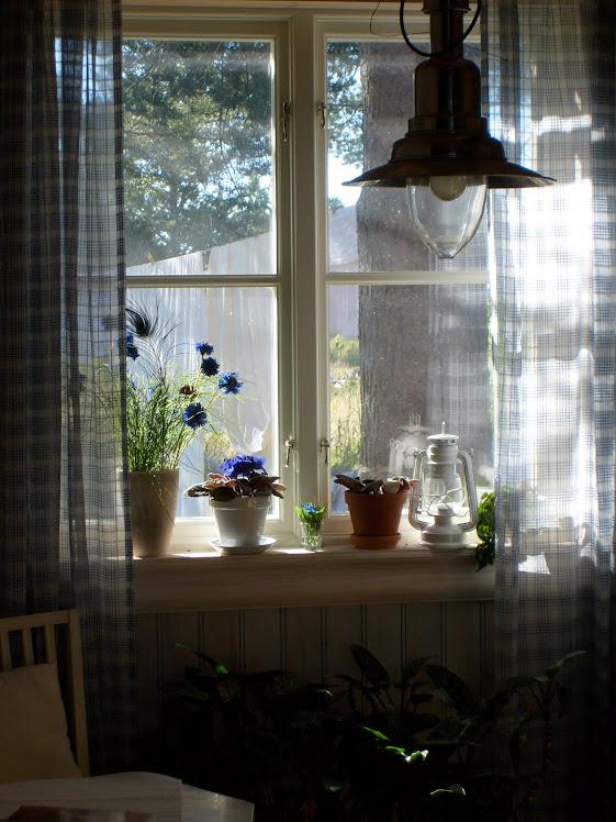 Fönster mot sommaren