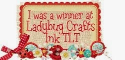 I was a winner for Ladybug Crafts Ink Anything Goes Challenge