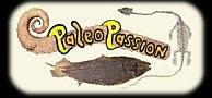 Pour les passionnés de fossiles