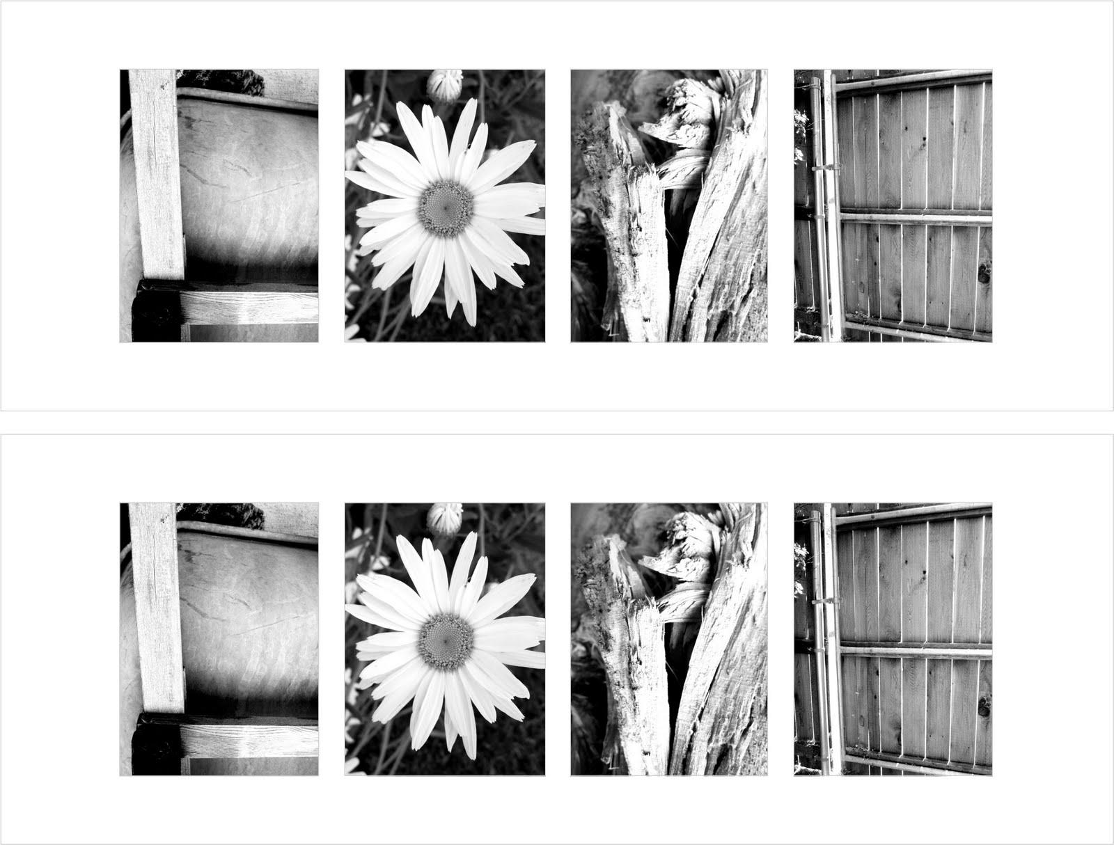 today s fabulous finds l o v e letter photo art free prints