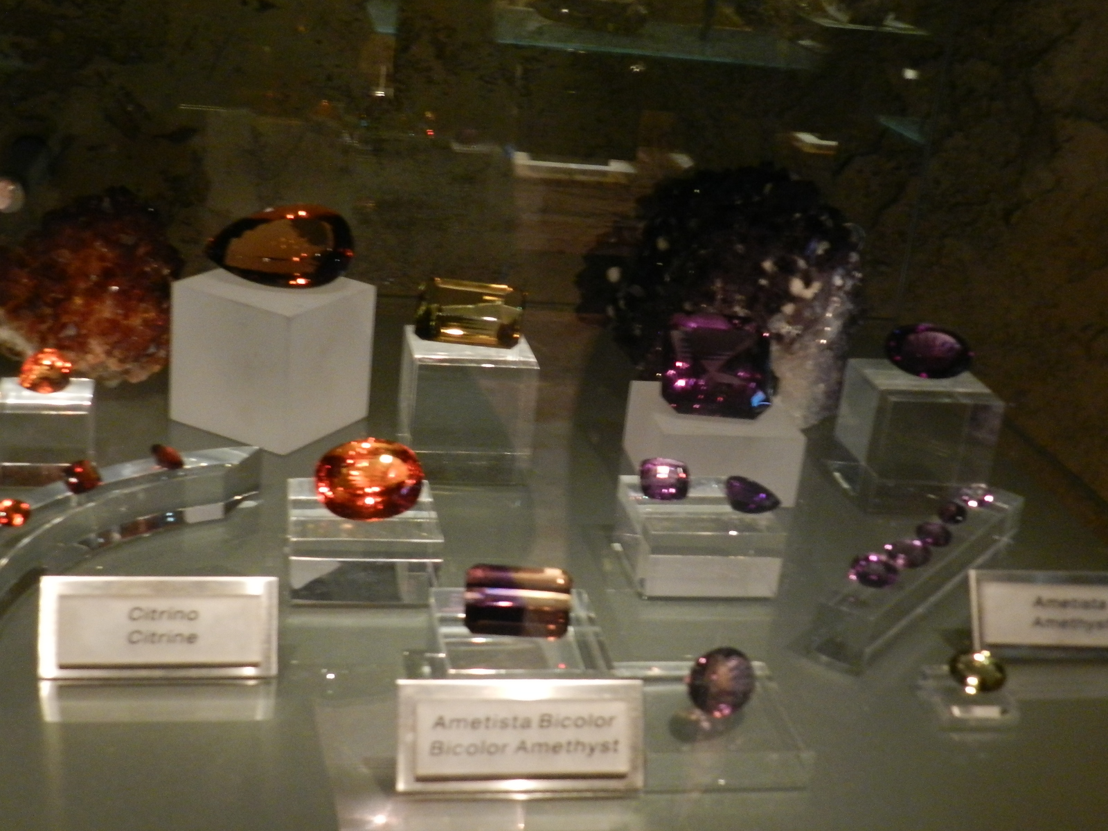 81622f380fd Museu da Amsterdam Sauer - Garotas de Blush