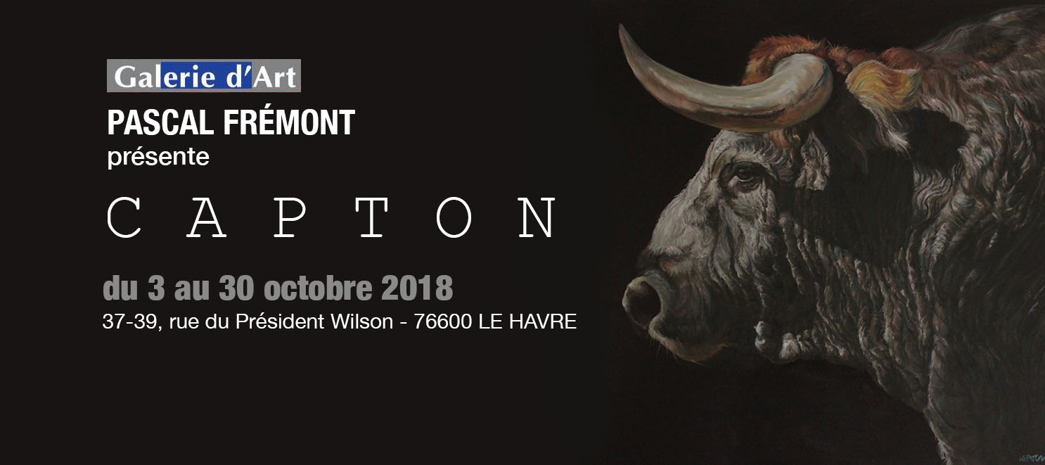 LE HAVRE : CAPTON À LA GALERIE D'ART PASCAL FRÉMONT
