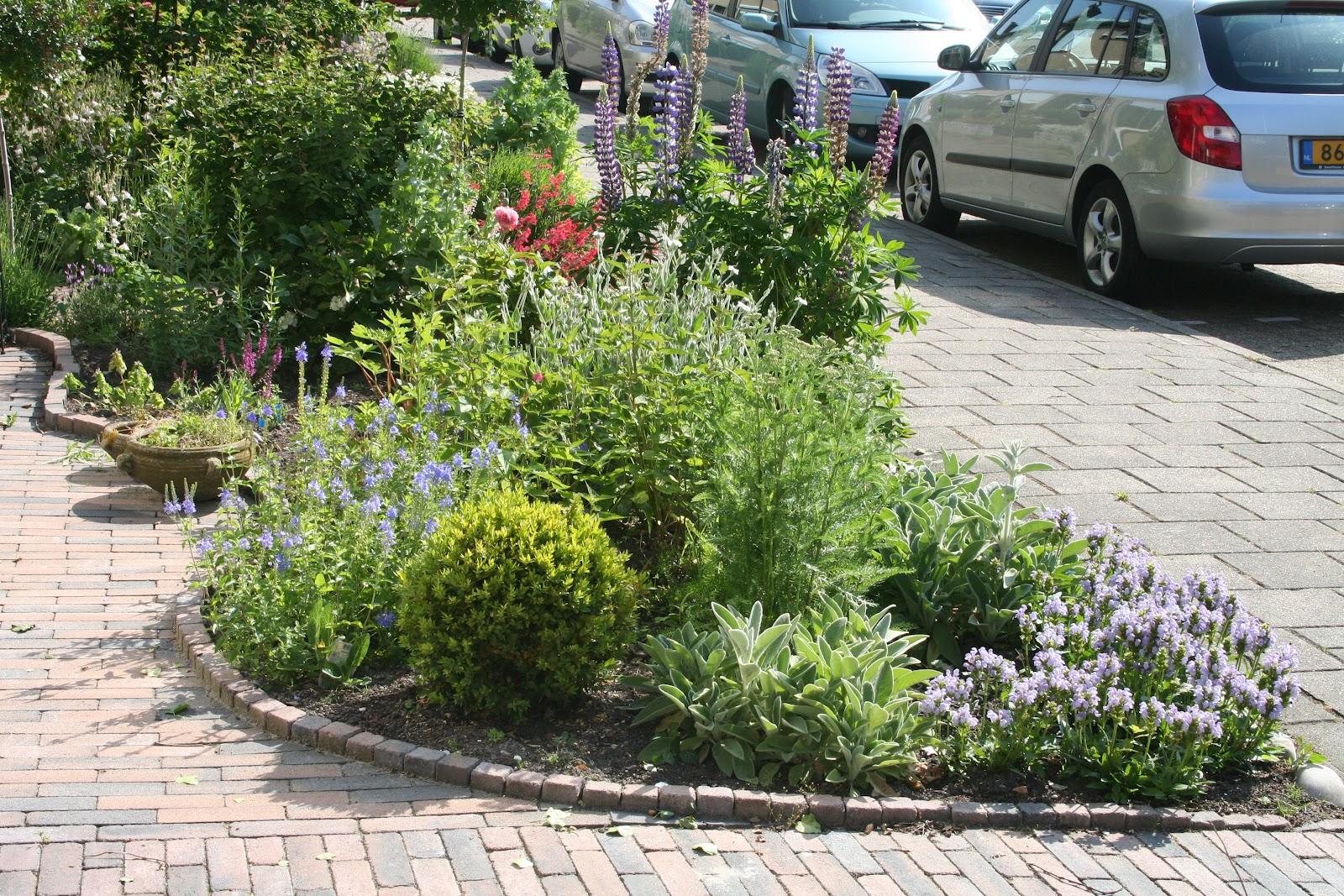 Bladgeritsel blogt ik wil een voortuin vol met bloemen for Mooie voortuinen foto s
