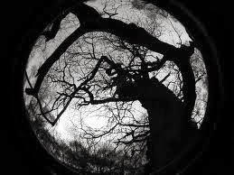 Éjsötét és napvilág/ misztikus fantasy sorozat