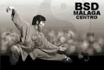 TAI CHI ADULTOS LOS MARTES EN BSD MÁLAGA CENTRO