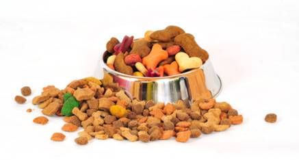 Goldens retriever portal peru septiembre 2013 for Alimento para perros