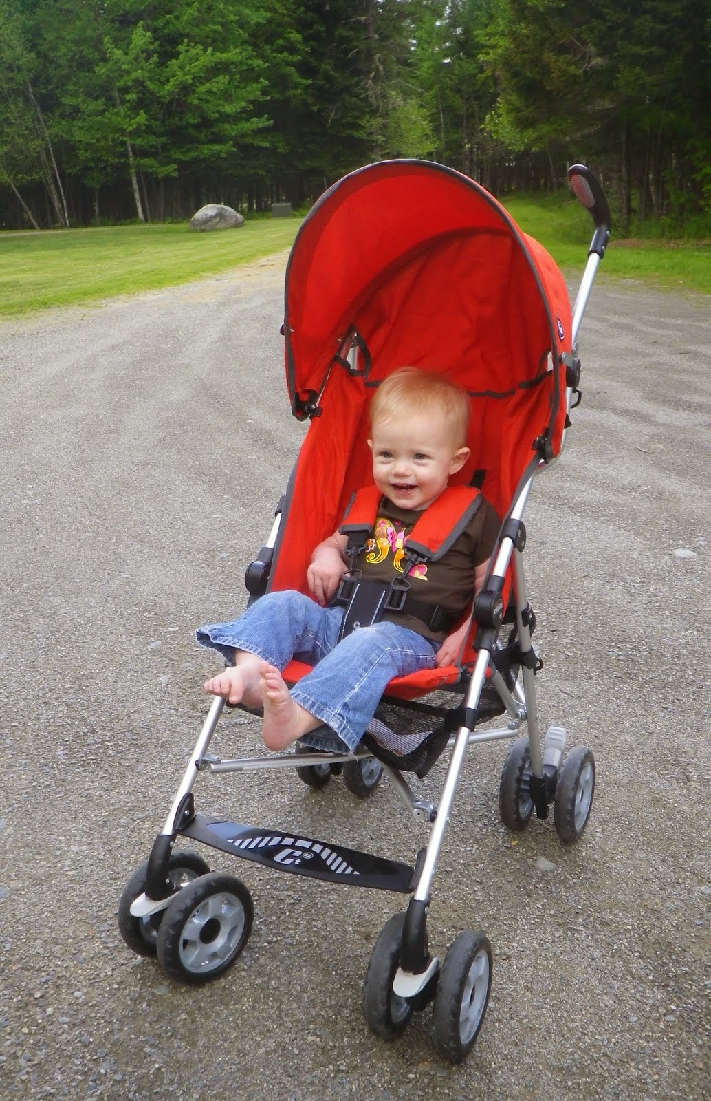 Naturally Inquisitive Mother: Our Umbrella Stroller: Review of the ...