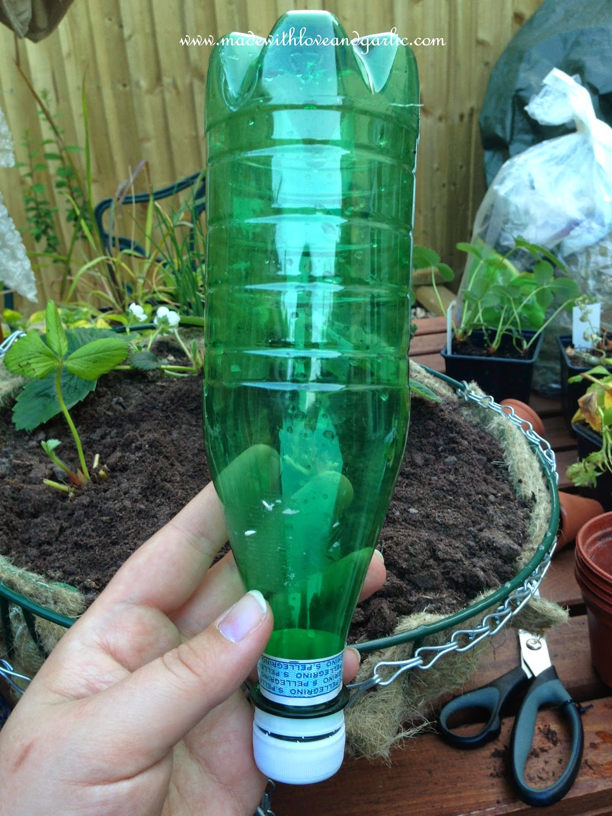 Made With Love And Garlic Diy Watering System Drip Feed From