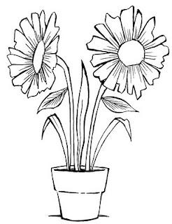 Desenhos Preto e Branco Flores lindas    Colorir