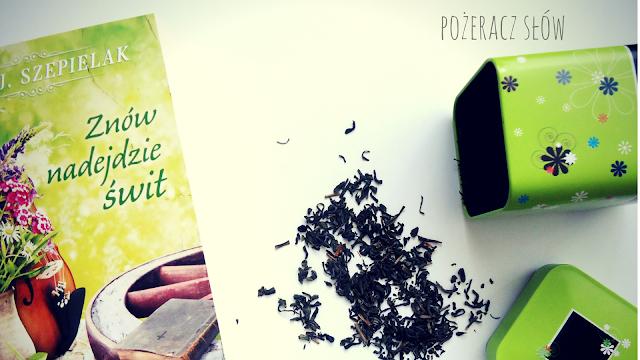 powieść, powieść polska, saga rodzinna, literatura obyczajowa