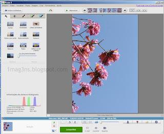 Picasa - imagem de fotografia selecionada