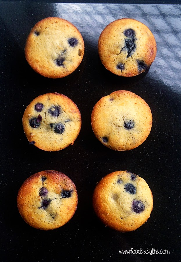 Coconut Flour Blueberry Muffins © www.foodbabylife.com