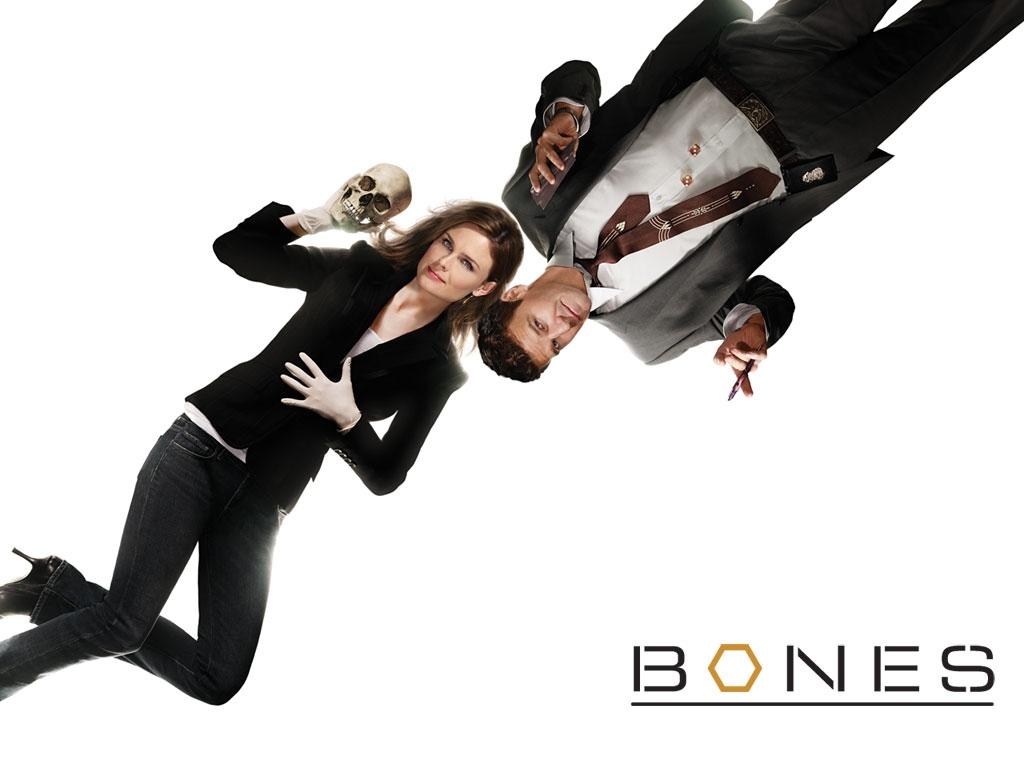 http://4.bp.blogspot.com/-GJNJTP9IcZE/TmOSObrbvQI/AAAAAAAAAy4/zb0YfK4pHV8/s1600/bones_tv_episode_poster_backgorund_www.Vvallpaper.net.jpg