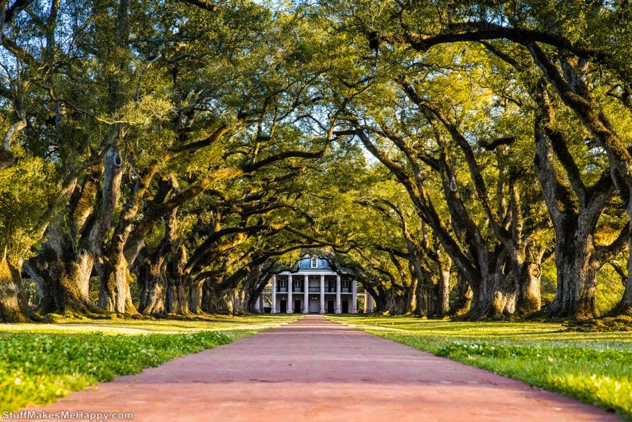 Museum-Estate 'Oak Alley', Louisiana, USA (Photo by Mario Sainz Martínez)