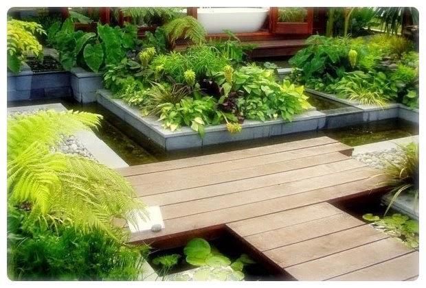 Desain Taman Kolam Rumah Minimalis