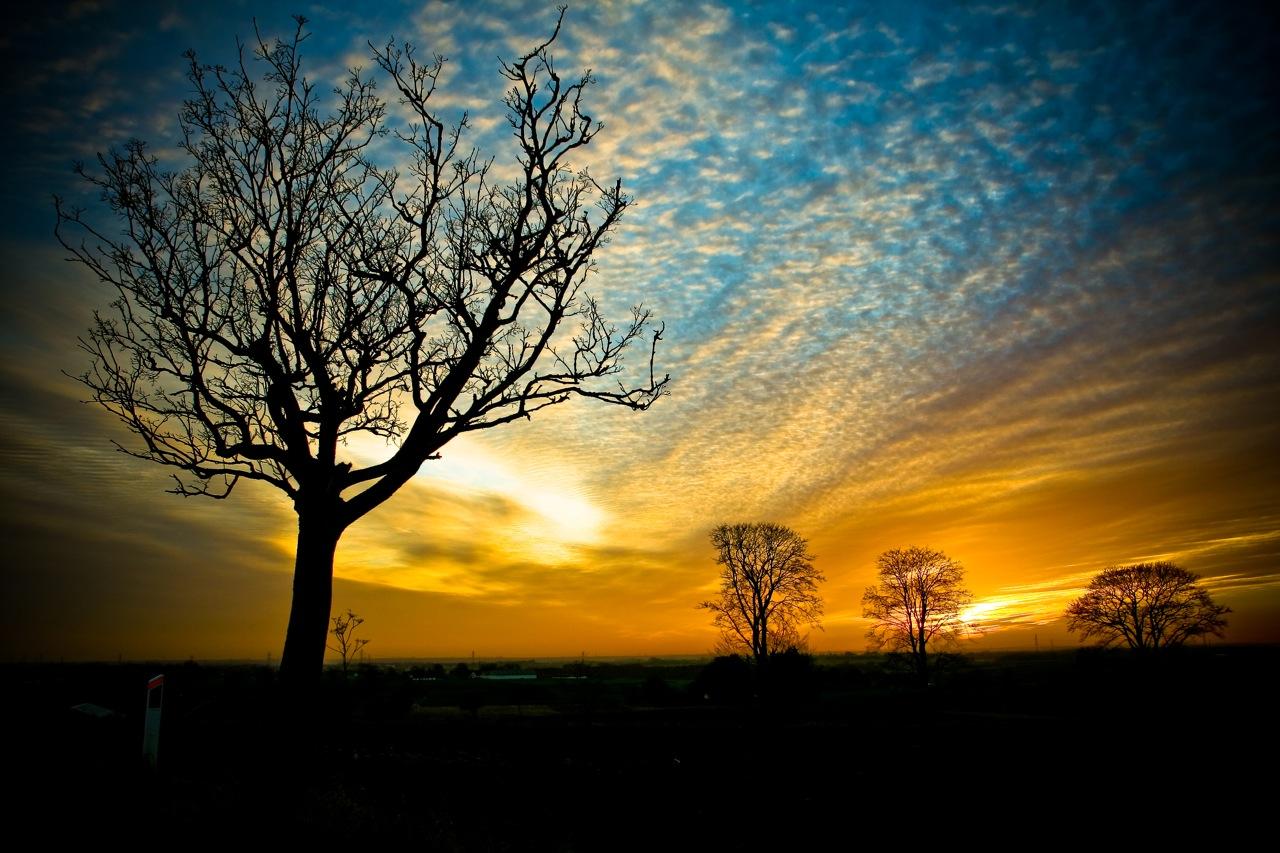 http://4.bp.blogspot.com/-GK0YV_QsfxE/Te76bPigNMI/AAAAAAAAAc4/7hWg-sgifRE/s1600/free-computer-wallpaper-nature-sky-wallpaper.jpg