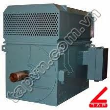 Động cơ xoay chiều 3 pha cao áp YRKK series