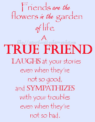 True Friends Friendship Quote With Picture