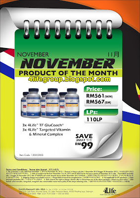 Product Of The Month - November 2012