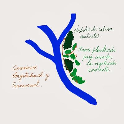 Buenas prácticas en restauración de ríos y riberas. Sombreado (I) Hikergoer