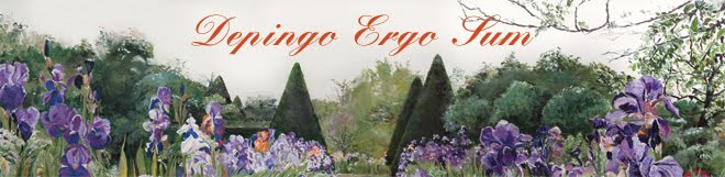 depingo ergo sum