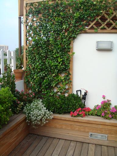 Crea tu jard n maneras de proteger tu jard n - Celosia de madera para jardin ...