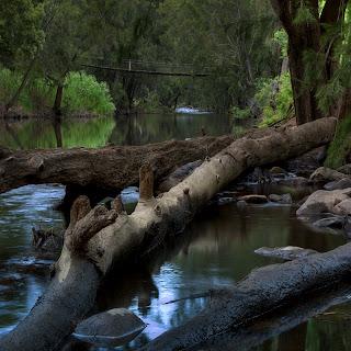 Swinging Bridge, Goodradigbee River Valley, New South Wales, Australia