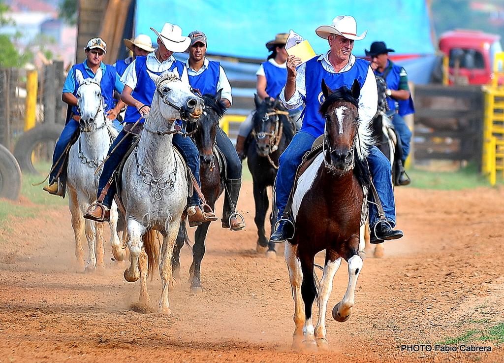 Di�rio de Tatu�: 1� Marcha Amadora de Muares e Equinos traz ...