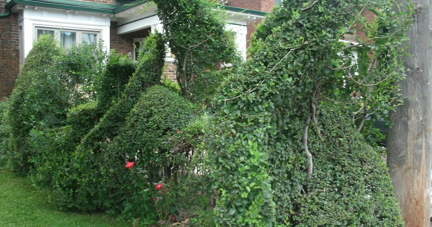 19+ [ On The Hedge Topiary Artist ] | Sleepy Probably The ...