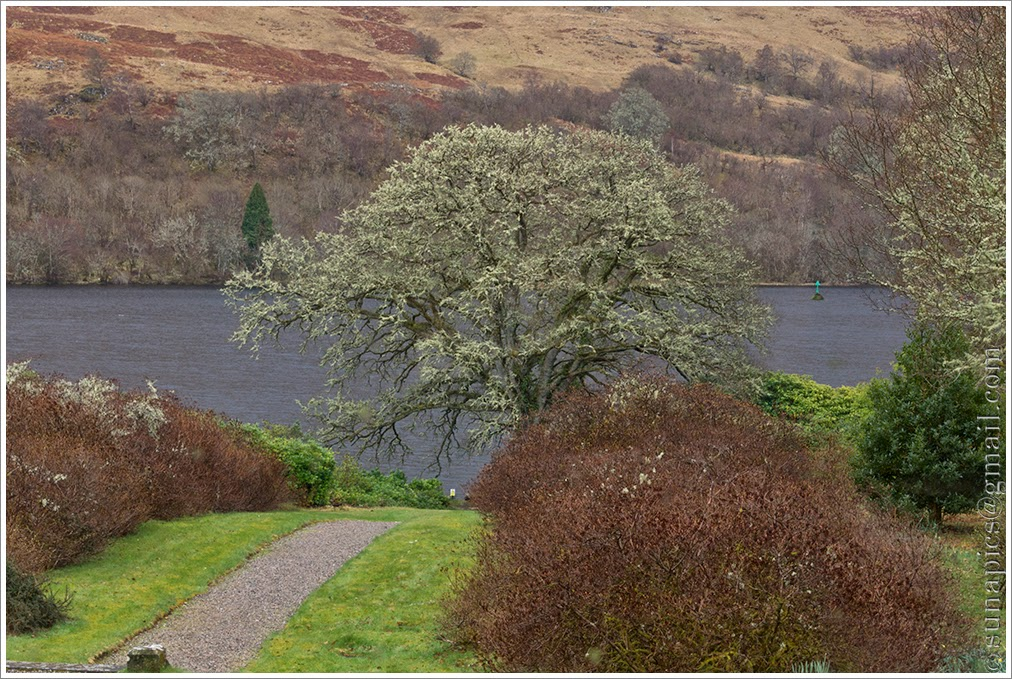 Chilly tuesday loch tulla to loch maree diary of a vagabond 10 am early coffee and banana cake at the glengarry castle hotel so vey civilised here i should really have crossed on the onich ferry to malvernweather Choice Image