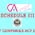 Format Of P/L And B/S Under Schedule III - Companies Act 2013