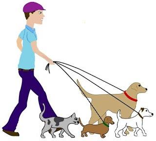 Il tuo cane o gatto merita un bravo Pet sitter