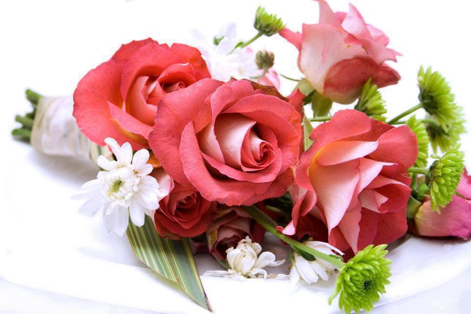 5 Imagenes De Flores Del Campo Imagenes de Flores