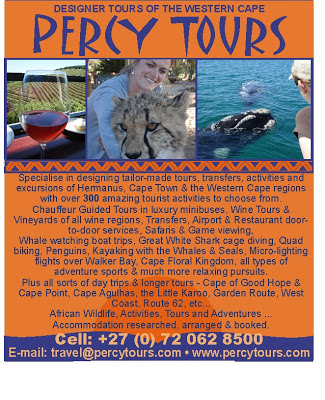 Hermanus is rammed full with incredibly amazing activities