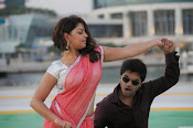 Thimmiri movie photos gallery-thumbnail-2