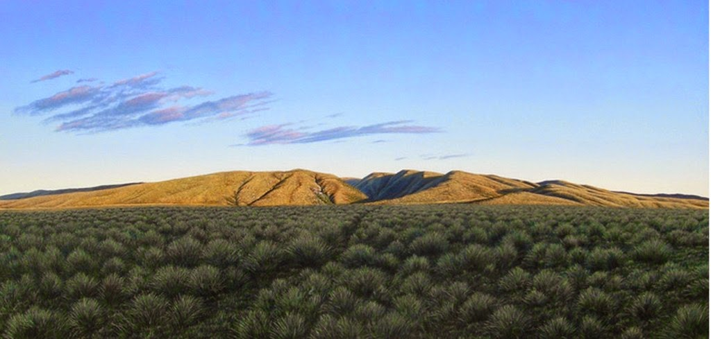 paisajes-naturales-del-campo-pintados-hiperrealistas