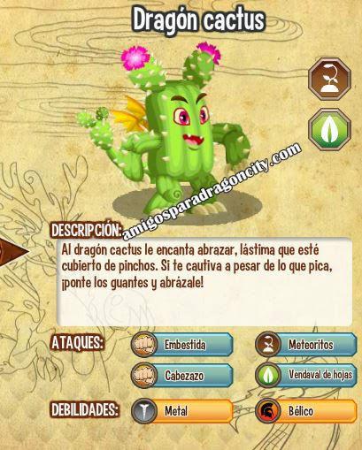imagen del dragon cactus y sus caracteristicas
