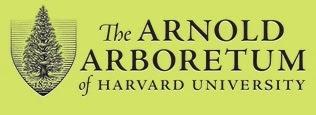 Arnold Arboretum Library