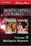Bewitching Desires Volume 3