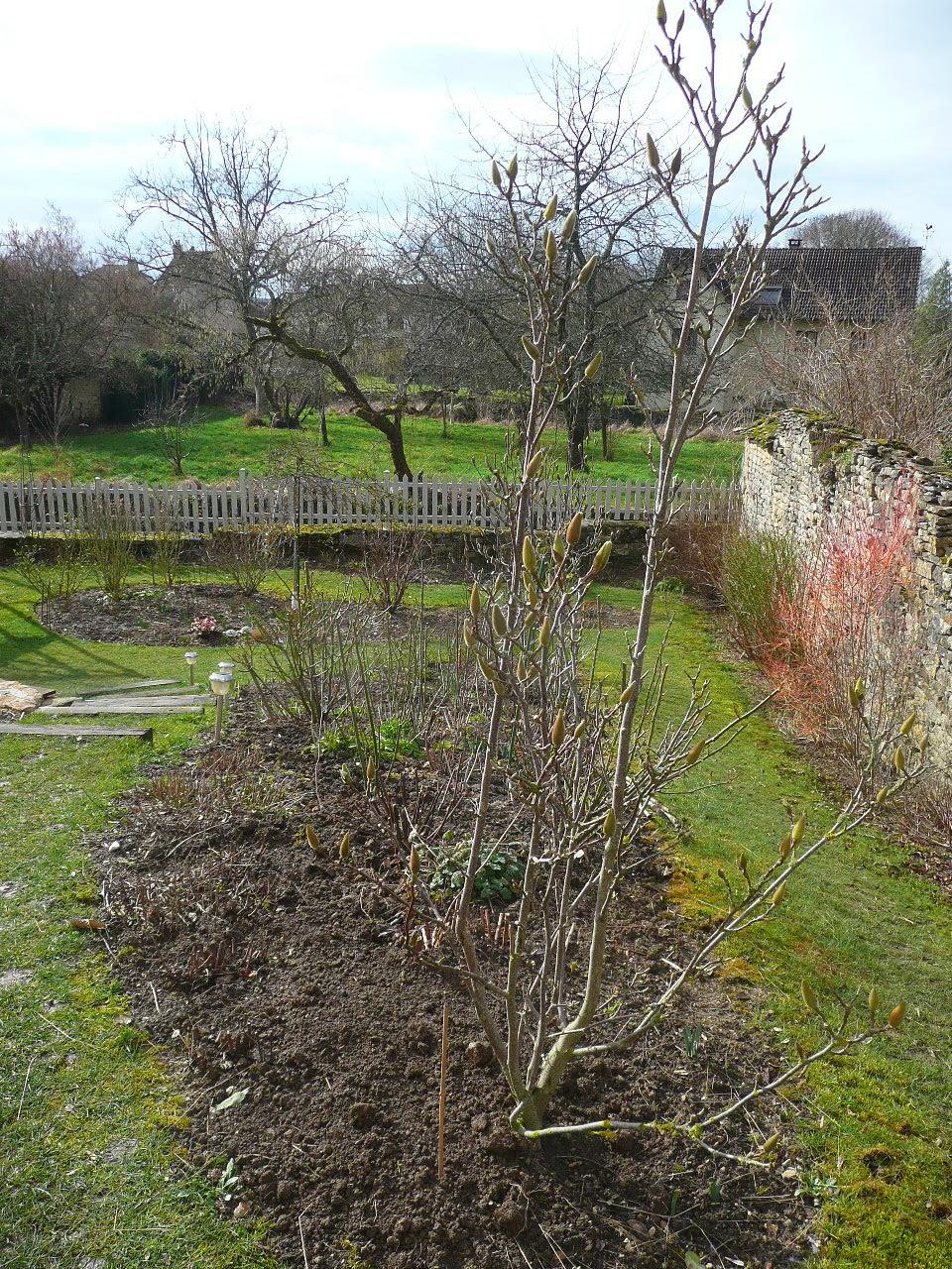 Notre jardin secret nettoyage de printemps et travaux - Traitement olivier bouillie bordelaise ...
