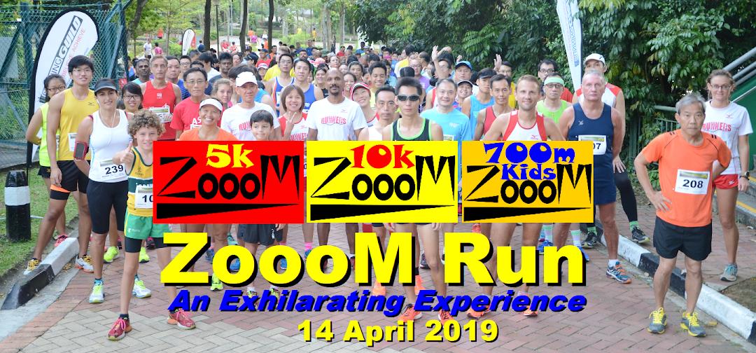 ZoooM Run