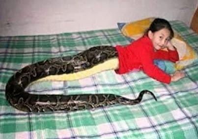 هل سمعتم بالطفلة الثعبان التي تثير الرعب بسبب صورتها ؟؟؟