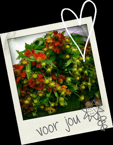 bloemetje voor jou