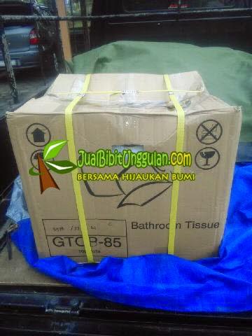 packing bambu petung