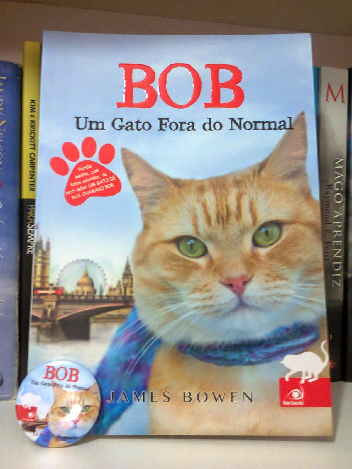 um gato fora do normal