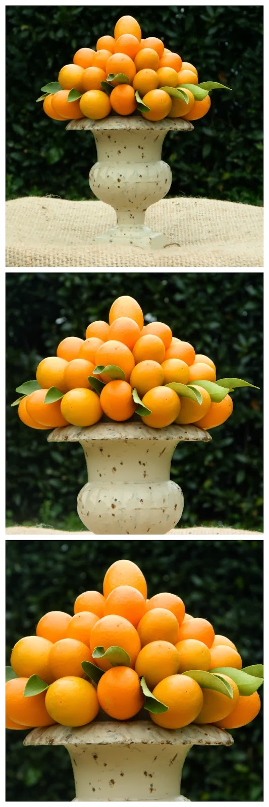 lieta cima una piramide di kumquat On decorazione kumquat