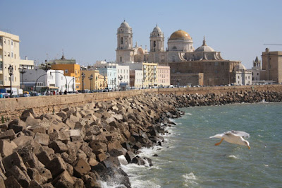 Cádiz Malecón and the cathedral